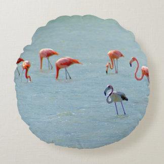Almofada Redonda Rebanho cinzento e cor-de-rosa dos flamingos no