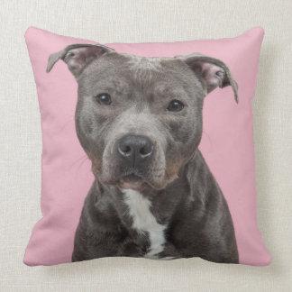 Almofada Retrato cinzento do terrier de pitbull