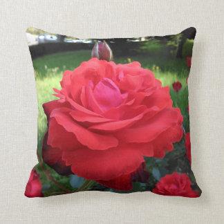 Almofada Rosas vermelhas lindos