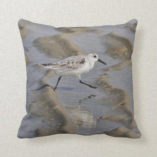 Almofada Sanderling