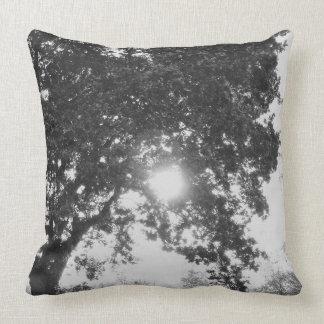 Almofada Sol inglês do campo através de uma árvore