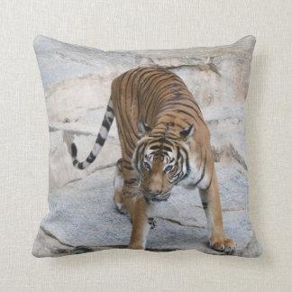 Almofada Tigre 1216 AJ