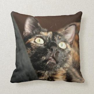 Almofada tortie cat pillow