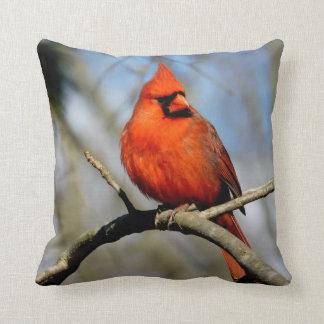 Almofada Travesseiro cardinal ensolarado da crista