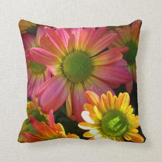 Almofada Travesseiro cor-de-rosa e amarelo do acento das