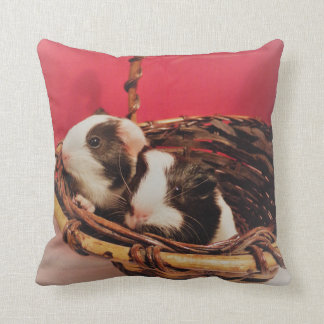 Almofada travesseiro da cobaia