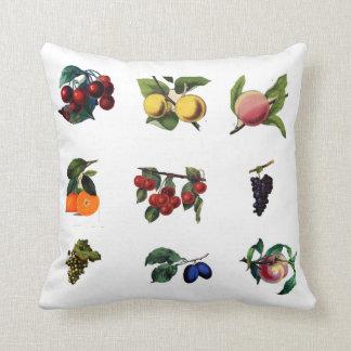 Almofada Travesseiro das frutas do vintage