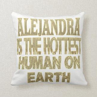 Almofada Travesseiro de Alejandra