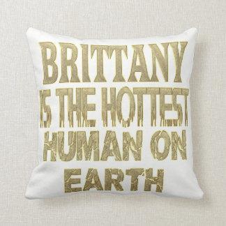 Almofada Travesseiro de Brittany