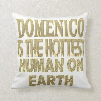 Almofada Travesseiro de Domenico