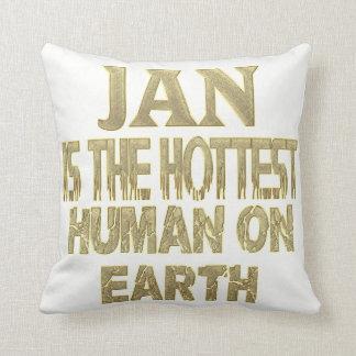 Almofada Travesseiro de janeiro