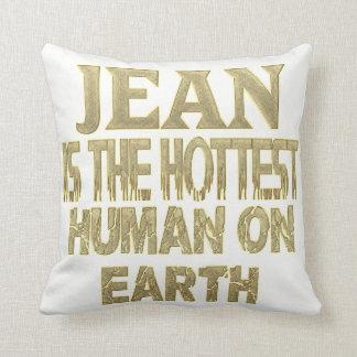 Almofada Travesseiro de Jean