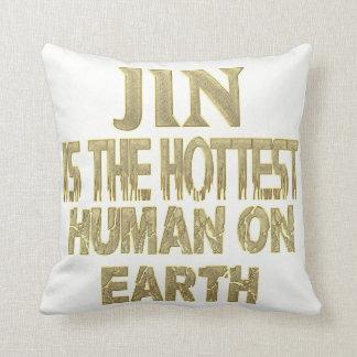 Almofada Travesseiro de Jin