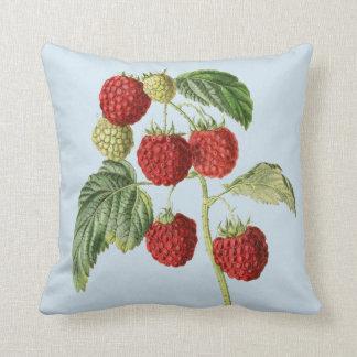 Almofada Travesseiro decorativo bonito da ilustração da