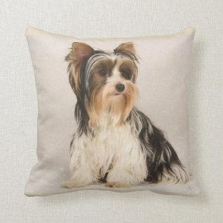 Almofada Travesseiro decorativo bonito da senhorita Mia