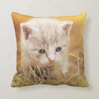 Almofada Travesseiro decorativo curioso do gatinho