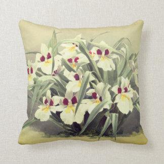 Almofada Travesseiro decorativo da orquídea do