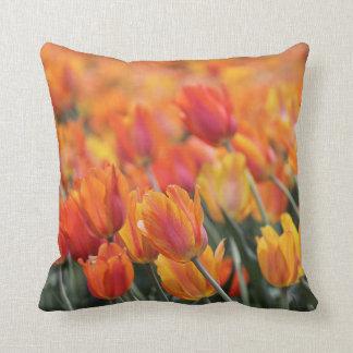 Almofada Travesseiro decorativo das tulipas