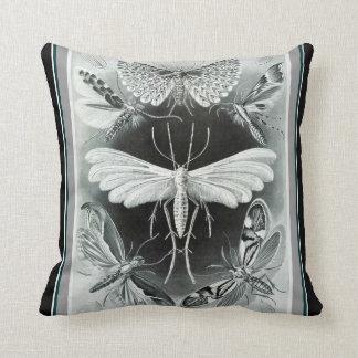 "Almofada Travesseiro decorativo de Ernst Haeckel ""Tineida"""
