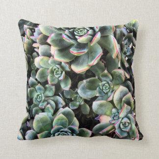 Almofada Travesseiro decorativo dos Succulents de Echevaria