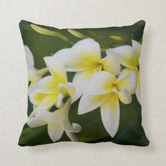 Almofada Travesseiro decorativo puro do quadrado da