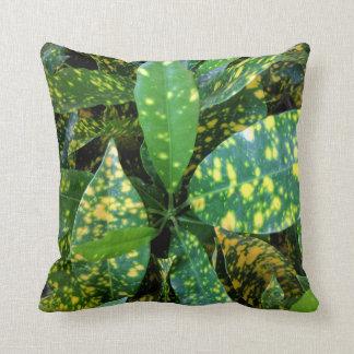 Almofada Travesseiro do Croton