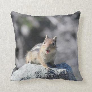Almofada Travesseiro do esquilo à terra