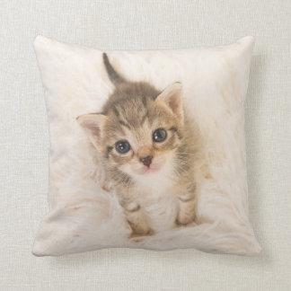 Almofada Travesseiro do gato do bebê