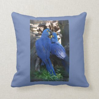 Almofada Travesseiro do papagaio