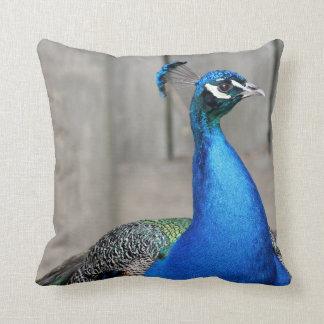 Almofada Travesseiro do pavão