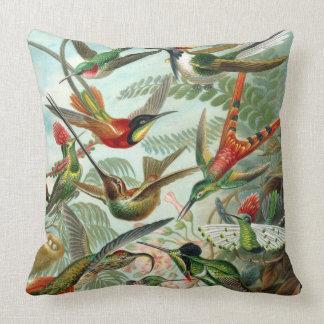 Almofada Travesseiro dos colibris de Haeckel