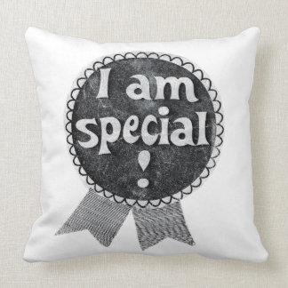 Almofada Travesseiro especial