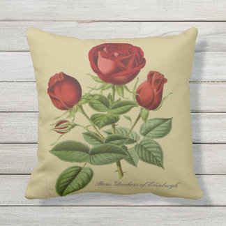 "Almofada Travesseiro exterior 16x16 de Rosa ""duquesa de"