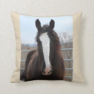 Almofada Travesseiro preto do cavalo de condado