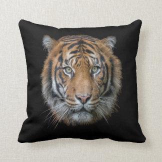 Almofada Uma cara selvagem do tigre de Bengal