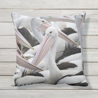 Almofada Vagem dos pelicanos
