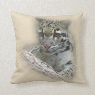 Almofada Wildcat novo