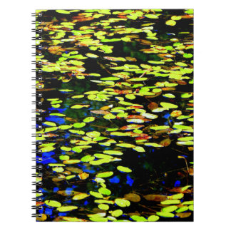 Almofadas de Lilly na lagoa Cadernos Espiral