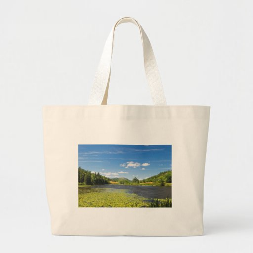 Almofadas de lírio no parque nacional do Acadia Bolsa Para Compra
