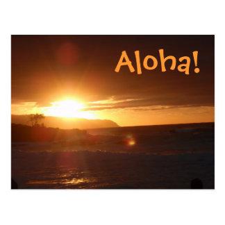 Aloha do cartão de Havaí