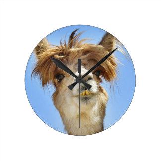 Alpaca com cabelo louco relógio redondo