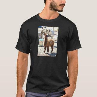 Alpaca do bebê - pacos do Vicugna Tshirts