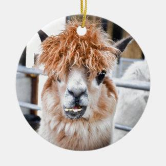 Alpaca Ornamento De Cerâmica