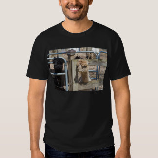 Alpaca peruana branca - pacos do Vicugna Camiseta