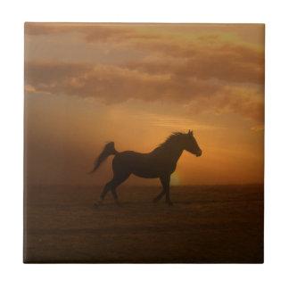 Amante árabe bonito do cavalo do azulejo da arte