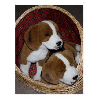 Amantes do cão - brinquedo macio cartão postal
