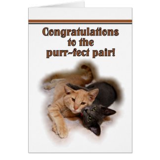 Amantes do gato que Wedding o cartão dos parabéns