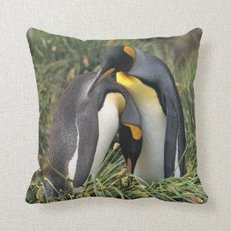 Amantes do rei pinguim travesseiros de decoração