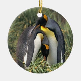 Amantes dos pinguins de rei ornamento de cerâmica redondo
