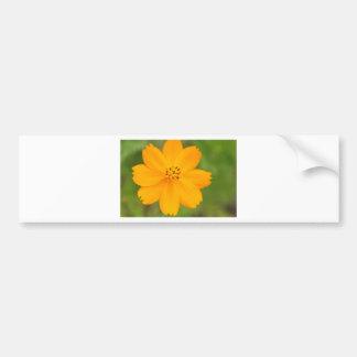 Amarela de Diversos Flor Adesivos